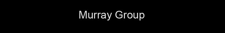 Murray Volkswagen Logo