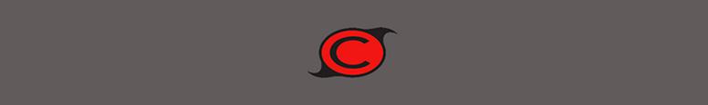 Carselect1.com Logo
