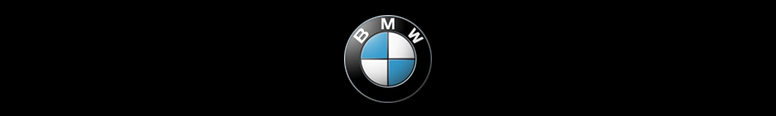 Vines BMW Gatwick Logo